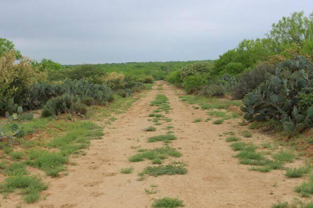 Cerrito Road II