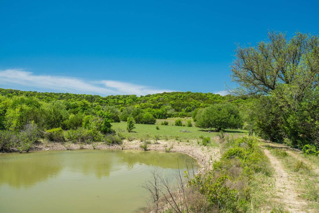 Cook Ranch.Hamilton County.Cranfills Gap.Hunting.Cattle.Live Water.Topography.Republic Ranches.Texas.Bryan Pickens - 1 of 63 (24)