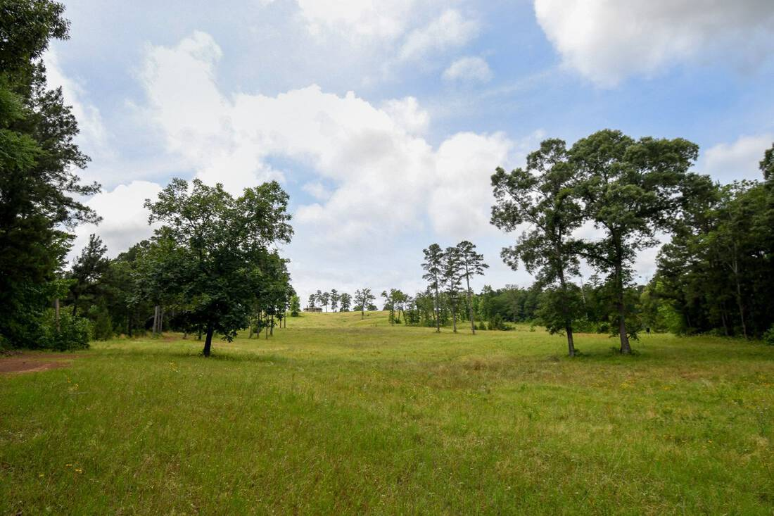 Flying L Ranch.Anderson County.Palestine.Texas.Hunting.High Fence.Hilltop Home.Timber.Republic Ranches.Bryan Pickens - 1 of 35 (14)