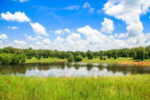 Chertoma Ranch - Lee County Texas Ranch for Sale - Republic Ranches