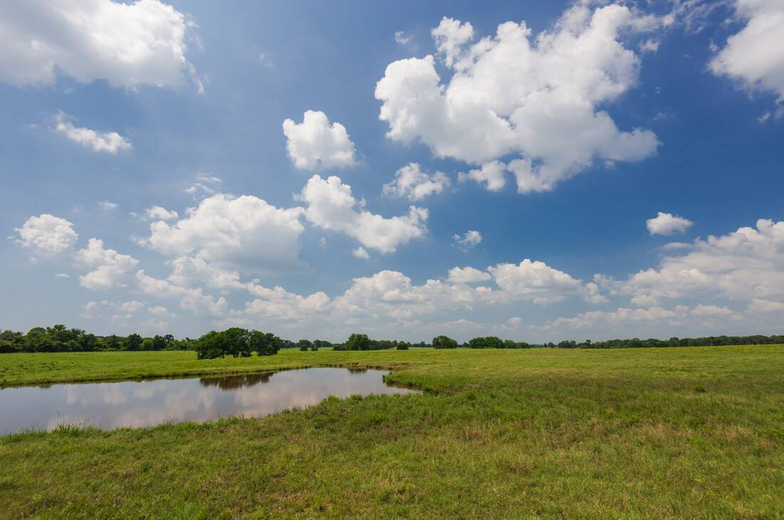 10 Ranch-Anderson County, Cayuga, Texas-Cattle Ranch-Recreational-Duck Marsh-East Texas-Republic Ranches-Bryan Pickens - 16 of 35