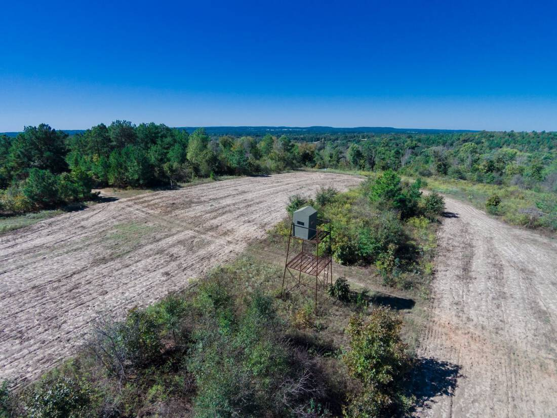 Chicken Ranch-Republic Ranches-Bryan Pickens-Henderson County-Frankston Texas-Timber-Deer Hunting Ranch - 045