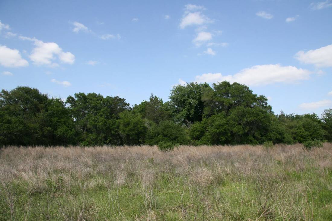 Ranch for Sale Ranch Broker Tallon Martin Republic Ranches Ranch Sales Austin