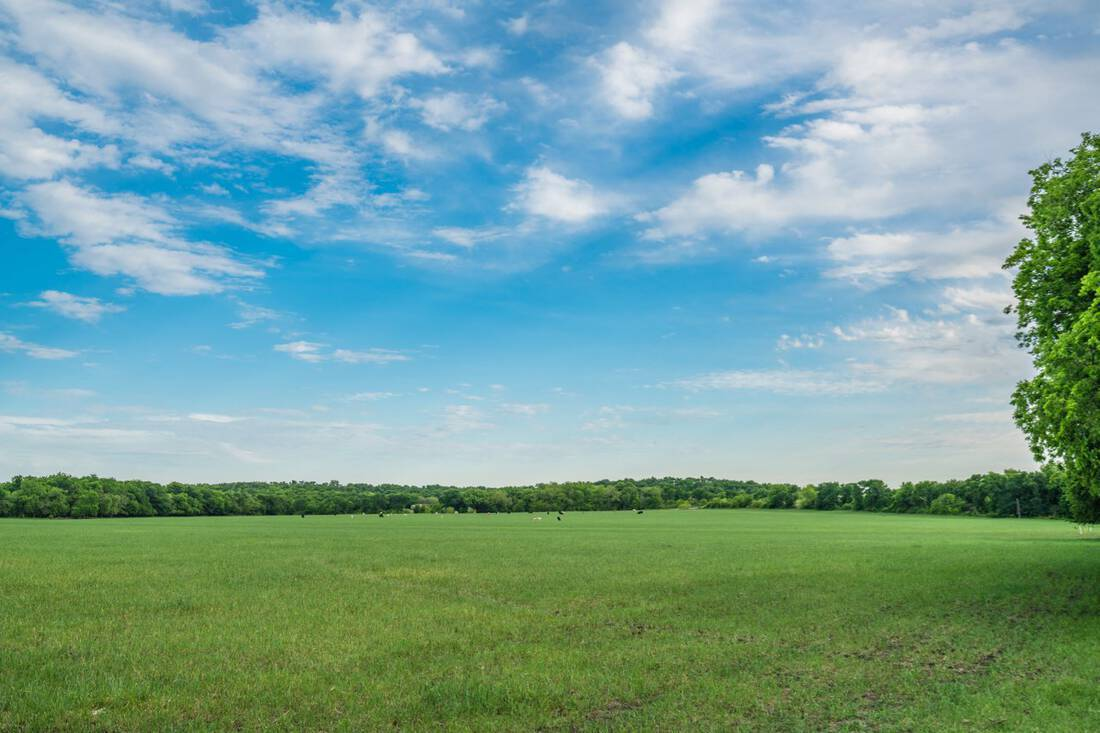 ShoopRanchWest.Wise County.Texas.Development.Ranch.Land.Investment.RepublicRanches.BryanPickens - 16 of 37
