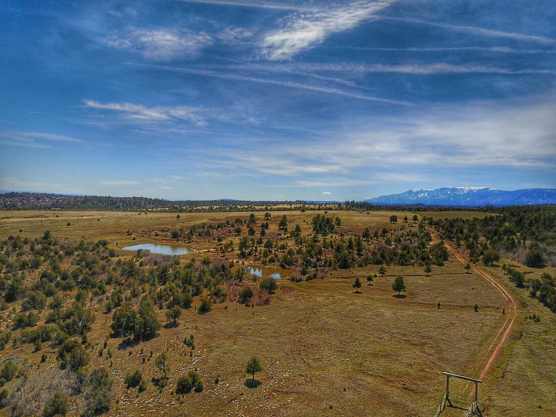 Colorado-Equestrian-Recreational-Ranch-Canyon-Colorado